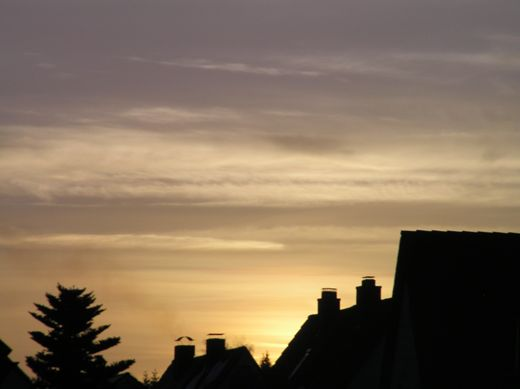 Sonnenaufgang, Bild 3